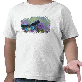 Fotografía de Sammamish Washington de la mariposa Camiseta