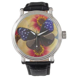 Fotografía de Sammamish Washington de la mariposa Relojes