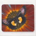 Fotografía de Sammamish Washington de la mariposa  Tapete De Ratones