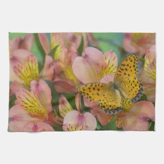 Fotografía de Sammamish Washington de la mariposa Toalla