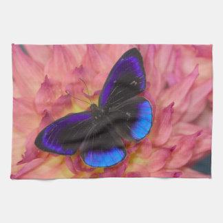 Fotografía de Sammamish Washington de la mariposa Toalla De Mano