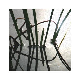 Fotografía de Zzen de la reflexión de las cañas en Lienzo Envuelto Para Galerías