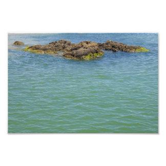 Fotografía del agua del extracto del verde azul