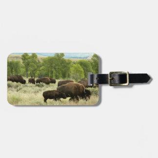 Fotografía del animal de la naturaleza del bisonte etiquetas para maletas