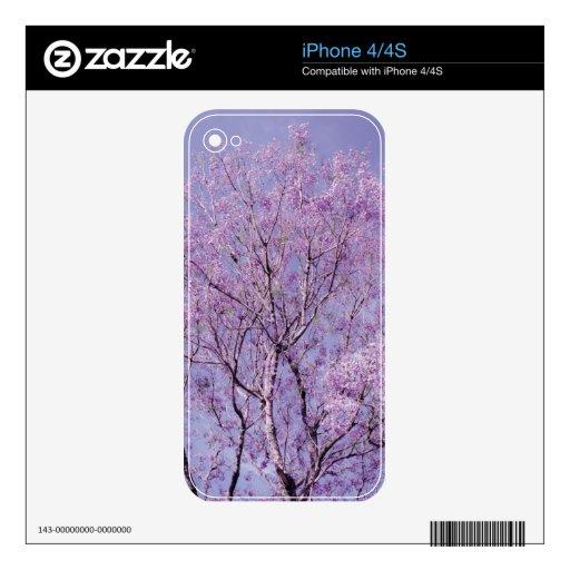 Fotografía del árbol de la lavanda iPhone 4 skins