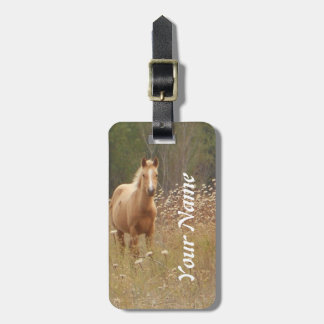 Fotografía del caballo etiquetas maletas