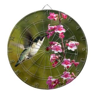 fotografía del colibrí tablero dardos