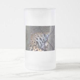 Fotografía del extracto del árbol de la cerca del  taza cristal mate