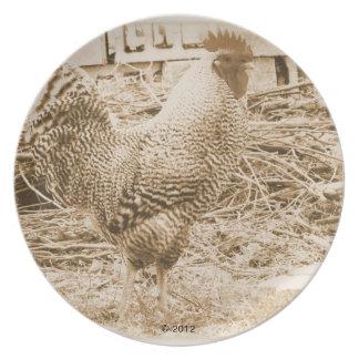 Fotografía del gallo del estilo del vintage platos