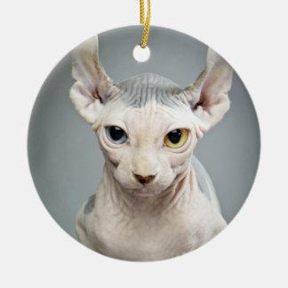 Fotografía del gato de la esfinge del duende adorno navideño redondo de cerámica