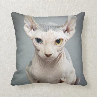 Fotografía del gato de la esfinge del duende cojin