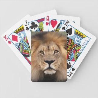 Fotografía del león baraja cartas de poker
