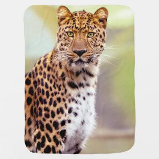Fotografía del leopardo