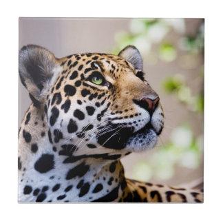 Fotografía del leopardo azulejo cuadrado pequeño