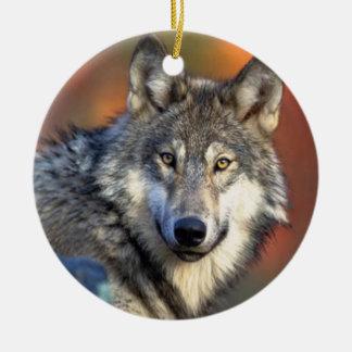 Fotografía del lobo adorno navideño redondo de cerámica