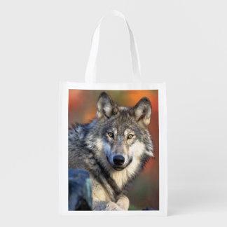 Fotografía del lobo bolsas para la compra
