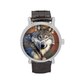 Fotografía del lobo reloj