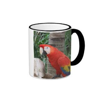 Fotografía del Macaw del escarlata Tazas