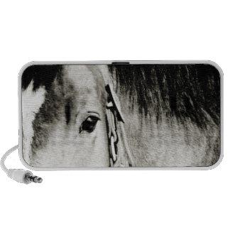 Fotografía del ojo del caballo notebook altavoces