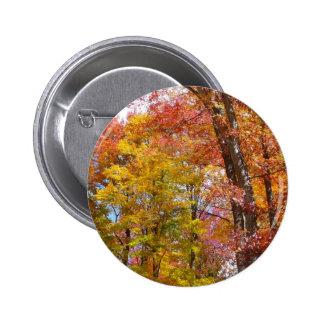 Fotografía del otoño de los árboles de la caída pin redondo de 2 pulgadas