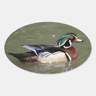 Fotografía del pato de la natación colcomanias de óval personalizadas