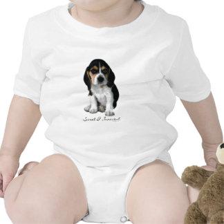 Fotografía del perro de perrito del beagle traje de bebé