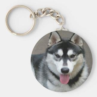 Fotografía del perro del Malamute de Alaska Llavero Redondo Tipo Pin