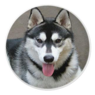 Fotografía del perro del Malamute de Alaska Pomo De Cerámica