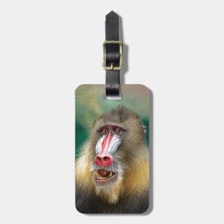 Fotografía del primate etiqueta de maleta