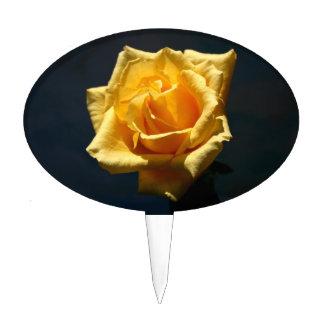 Fotografía del rosa amarillo contra fondo oscuro figuras de tarta