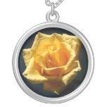 Fotografía del rosa amarillo contra fondo oscuro collares