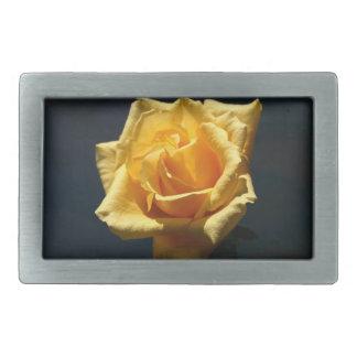 Fotografía del rosa amarillo contra fondo oscuro hebilla cinturón rectangular