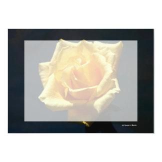 Fotografía del rosa amarillo contra fondo oscuro comunicado personal