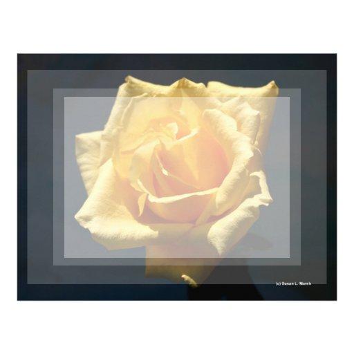 Fotografía del rosa amarillo contra fondo oscuro membrete a diseño
