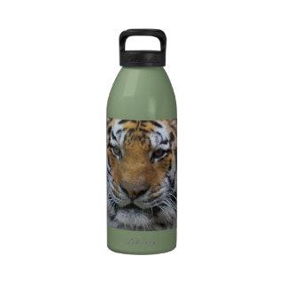 Fotografía del tigre siberiano botella de agua