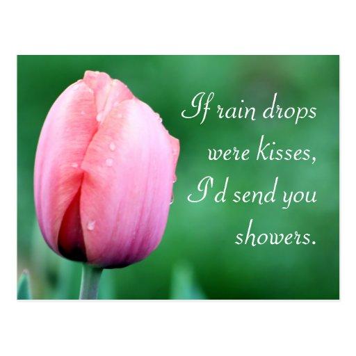 Fotografía del tulipán de las gotas de agua y de tarjetas postales