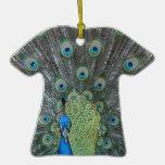 Fotografía del varón del pavo real por completo… ornamento para arbol de navidad