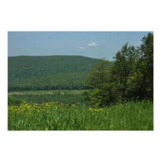 Fotografía del verano de Pennsylvania de las Fotografía