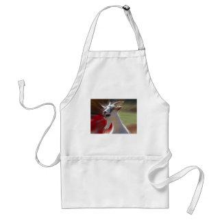 Fotografía divertida de la cabra de Tallking Delantal
