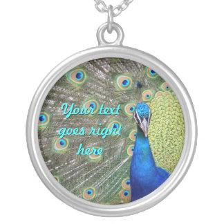 Fotografía elegante del pavo real collar plateado