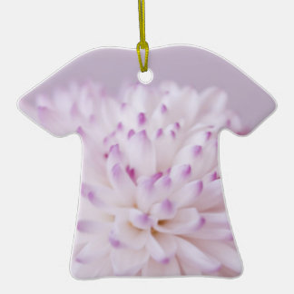 Fotografía en colores pastel suave de la flor ornamento de navidad