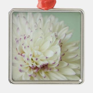 Fotografía en colores pastel suave de la flor ornamentos de reyes magos