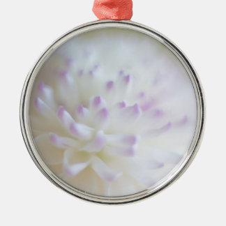 Fotografía en colores pastel suave de la flor ornatos