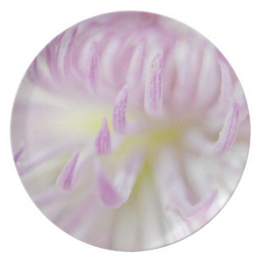 Fotografía en colores pastel suave de la flor platos de comidas
