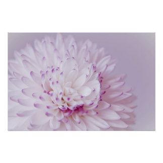 Fotografía en colores pastel suave de la flor póster