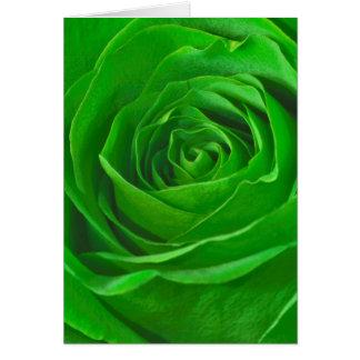 Fotografía esmeralda abstracta del centro del rosa tarjeta de felicitación