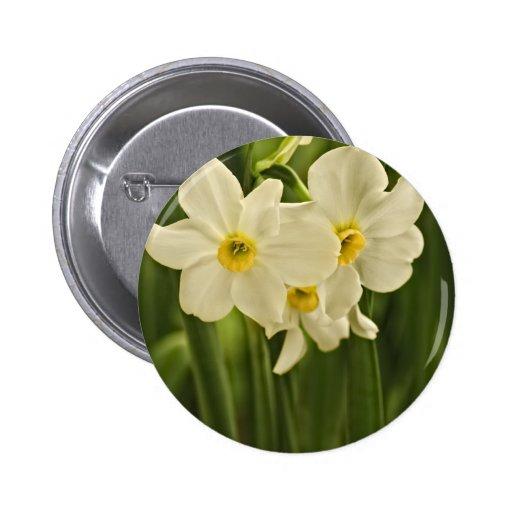 Fotografía floral:  Narciso blanco de la primavera Pin Redondo De 2 Pulgadas