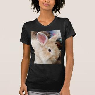 Fotografía francesa del conejo del angora del amor camiseta