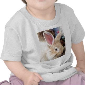 Fotografía francesa del conejo del angora del amor camisetas