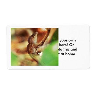 Fotografía fresca del lagarto etiqueta de envío
